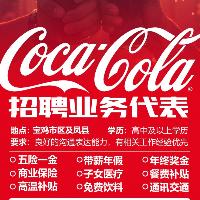 中粮可口可乐饮料饮料陕西有限公司